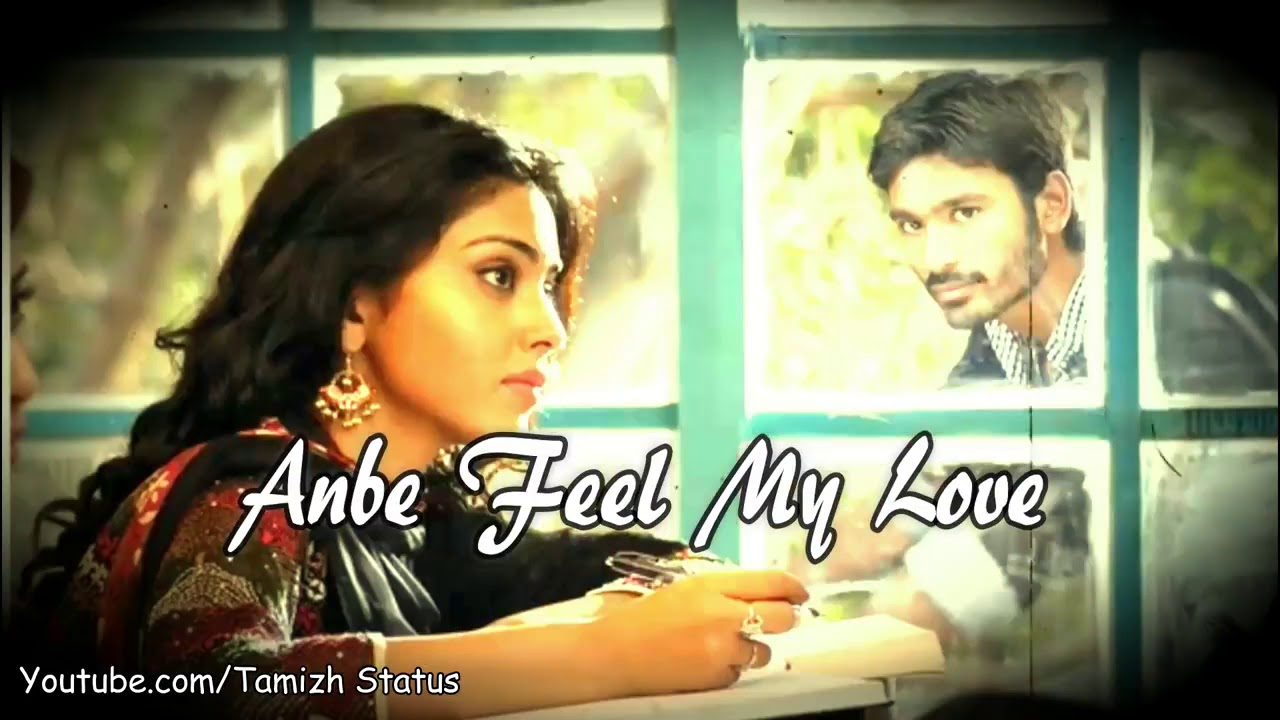 Feel my love song lyrics – Kutty