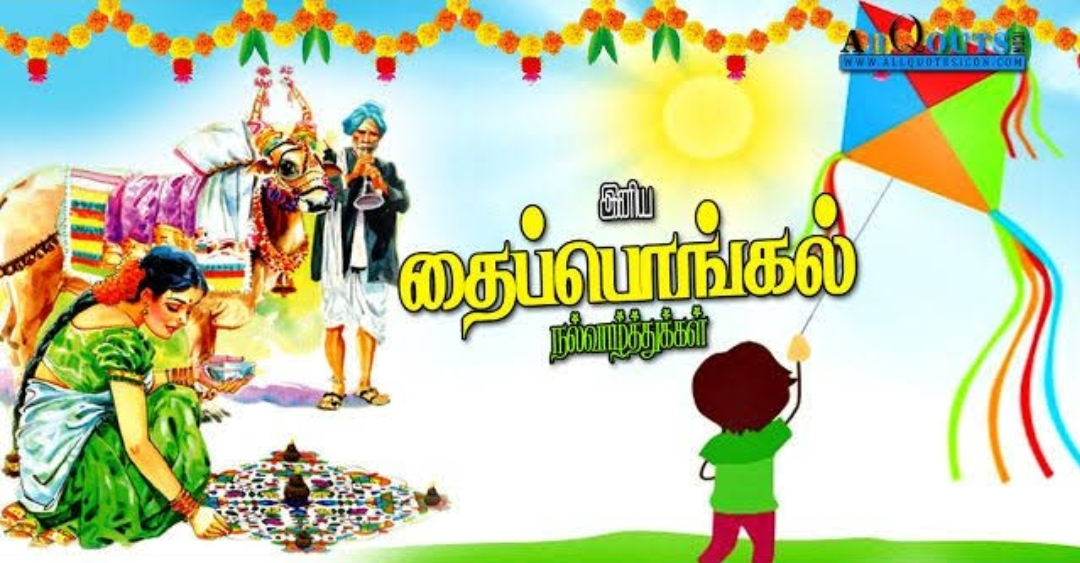 Pongal Wishes, Greetings, Images, Wall Paper